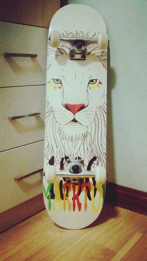 My new skaterboard !! Skater Girl Skaterboard Skater Skaterboarding Lion Cool Love Getting Inspired Hello World First Eyeem Photo EyeEm Best Shots Taking Photos Check This Out Relaxing Enjoying Life Birthday Present My Unique Style Hahaha Awesome
