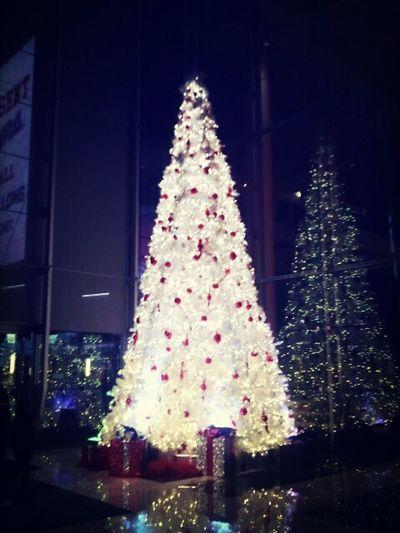 love this tree <3