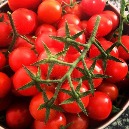 Red Freshness Healthy Eating Food Juicy Nature Tomatos Pomodoro Rosso Verdura Mangiareitaliano Food Stories