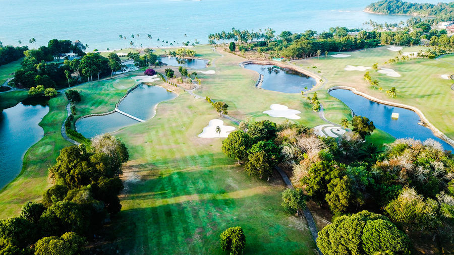 Water Tree Sea Flood Beach Golf Course Aerial View Sand Sky Landscape
