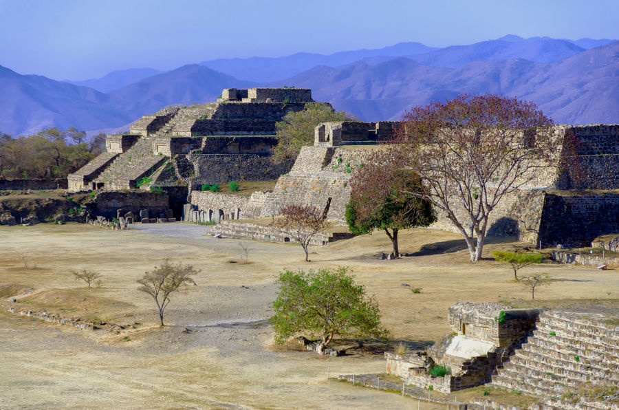 Landscape of Monte Alban ruins in Oaxaca, Mexico Archaeology Mayan Mayan Ruins Mexico Oaxaca Oaxaca México  Ruins Tree America Ancient Archaeological Sites Architecture Building Complex History Maya Monte Alban Old Old Ruin Outdoors Piramid Platform Ruin Temple Tourism