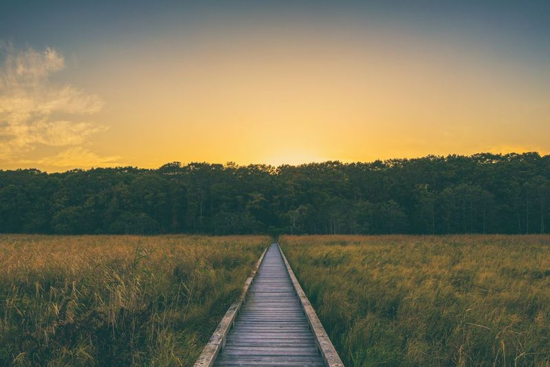 Boardwalk amidst field against sky during sunset