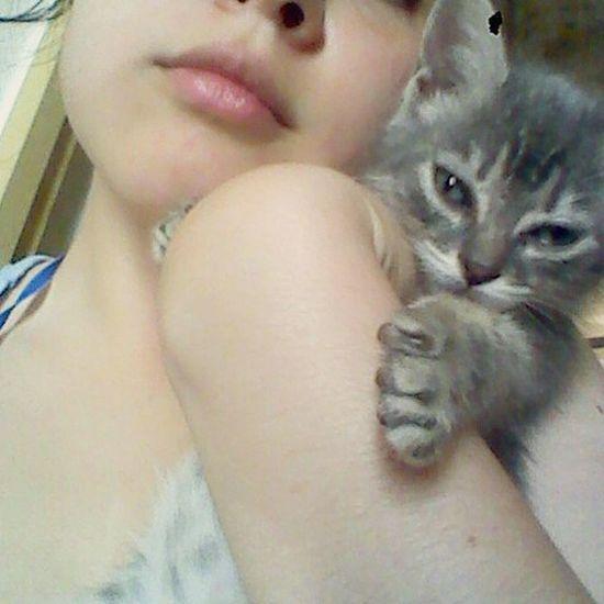 Merlina la mimada de la casa Cat Lovely Love Cute Instaphoto Photo Photocat Today