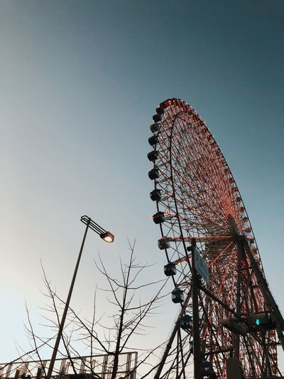 Holiday Sky Low Angle View Sky Nature Amusement Park Clear Sky Amusement Park Ride Arts Culture And Entertainment Plant No People Copy Space Tree Built Structure Silhouette Tall - High Ferris Wheel Outdoors Architecture Branch Day