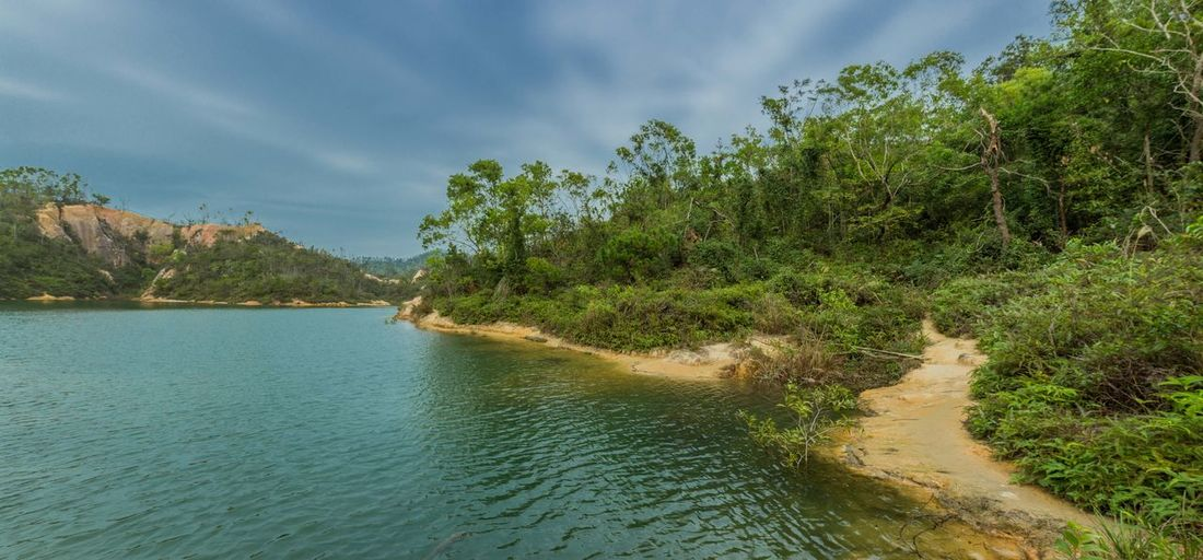 JIDA reservoir Water Tree Plant Scenics - Nature Nature Tranquility Beauty In Nature Forest Tranquil Scene Cloud - Sky Day Land No People Sky Non-urban Scene River Environment Landscape Green Color Outdoors Swamp