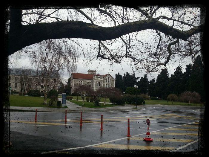 beautiful campus on a rainy day Boğaziçi Üniversitesi Kuzey Kampüsü
