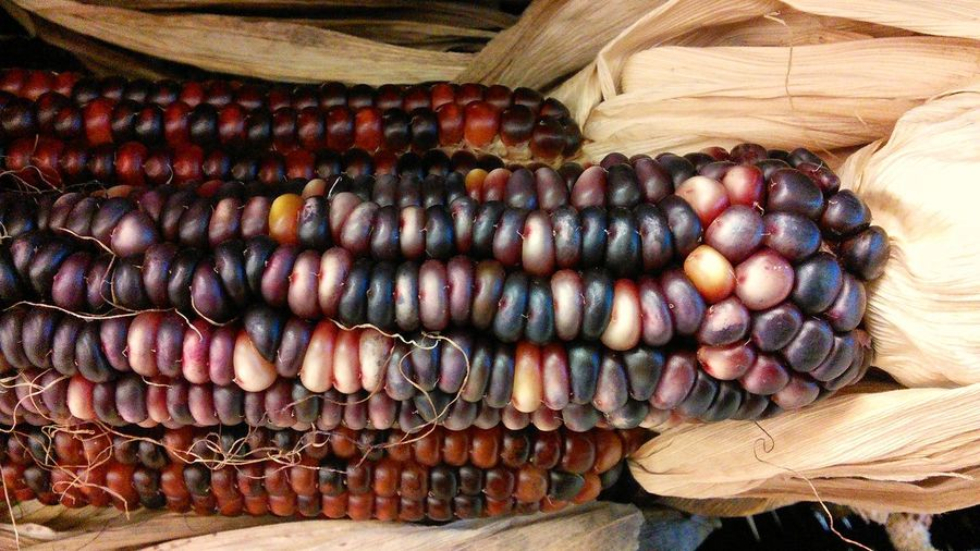 Textures And Surfaces Indian Corn, always beautiful! Taking Photos