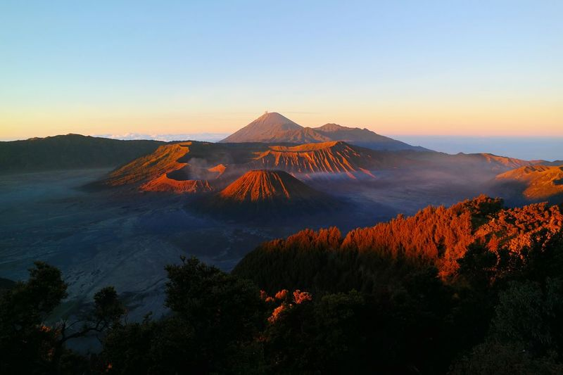 Mountain Mountain Peak Landscape Dawn Sunrise Day Vulcano Bromo Mountain Pinaceae Sky Outdoors No People Forest Nature Beauty In Nature Fog Astronomy Clear Sky Bromo Mountain Indonesia INDONESIA Been There.