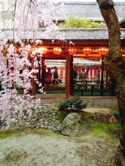 都おどり素敵でした Kyoto Gion