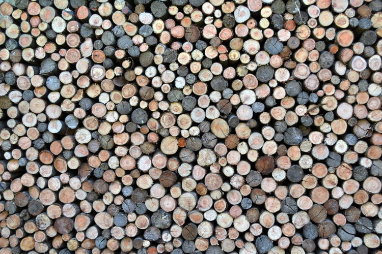 Abundance Arrangement Backgrounds Brown Circle Close-up Detail Extreme Close Up Focus On Foreground Full Frame Geometric Shape In A Row Large Group Of Objects Logs Multi Colored No People Order Outdoors Overhead View Pattern Repetition Textured