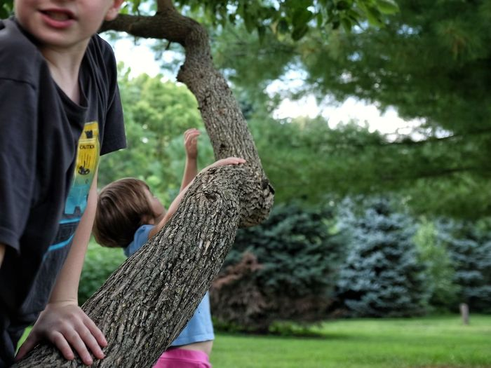 A day in the life. August 2016 Beatrice, Nebraska 35mm Camera A Day In The Life At The Park Camera Work Climbing Trees Color Photography Composition Cropped Eye For Detail Eye For Photography EyeEm Best Shots EyeEm Gallery EyeEm Masterclass Flash Photography FUJIFILM X100S Hanging Out Kids Being Kids Photo Photography Play Rural America Shootermag Small Town Stories World Photo Day A Bird's Eye View