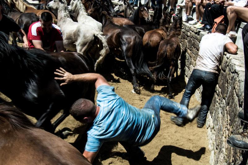 Sabucedo, Spain 06/2016. Festival Rapa das Bestas, shearing the beasts Aloitadore Beast Besast Bestoftheday Horizon Over Water Riding Sabu Sabucedo Shea Shearing Taming Wild