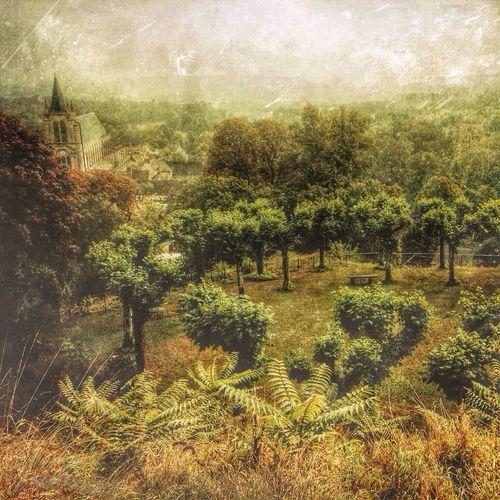 NEM Landscapes Landscape