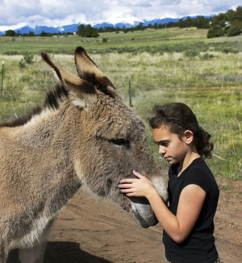 Side View Of Girl With Donkey On Field