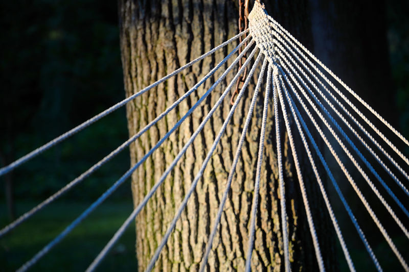 Close-up No People Focus On Foreground Pattern Outdoors Day Nature Metal Selective Focus Safety Sunlight Connection Barrier Protection Tree String Hammock Chain