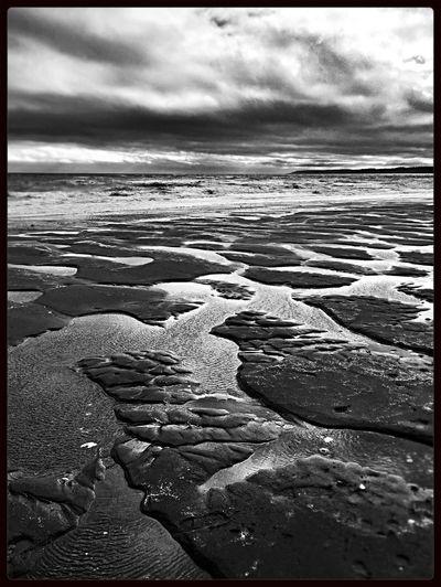Double Bluff Beach Landscape Water Contrast WhidbeyIsland Blackandwhite