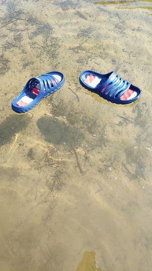Flips Im Wasser