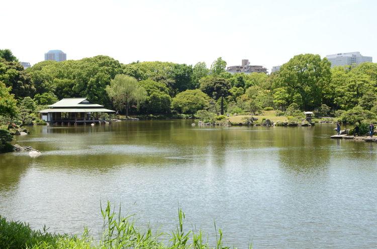 Water Lake Kiyosumi Garden Koto Japanese Garden Japan Tokyo