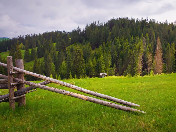 Picturesque spring mountains scene with wooden split rail fence across a green and lush pasture