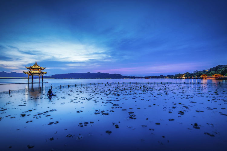 Blue Blue Sky City Life Linghts Lotus Leaf Pond Nightphotography Reflections In The Water Scenery Sky And Clouds West Lake, Hangzhou