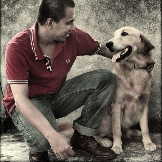 Me Dog Oi Pet Drmarten Fredperry Animal Photography Animal Love Me Boots❤ Boot Petlover Pets
