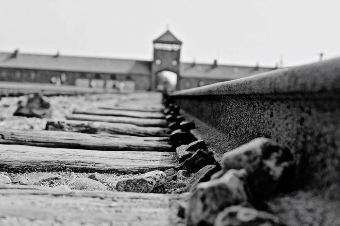 Remember Memory Memorial Peace Not Forgotten Blackandwhite
