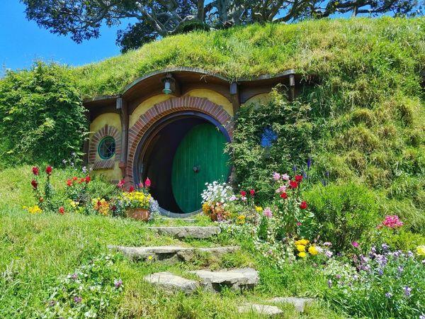 2017 Grass Green Hobbit Architecture Day Flower Garden Growth House Nature New Zealand No People Outdoors Plant Tree ニュージーランド ホビット ホビット村 小人