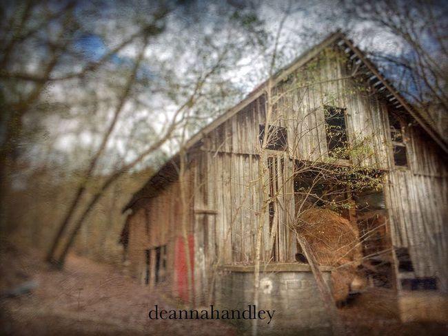 Wasting away... Tadaa Community Hidden Barn #barnporn #spring #nature #hdr #color Old Barns EyeEmBestPics Eye4photography  EyeEm Best Shots Barn Decay Tennessee EyeEm Nature Lover
