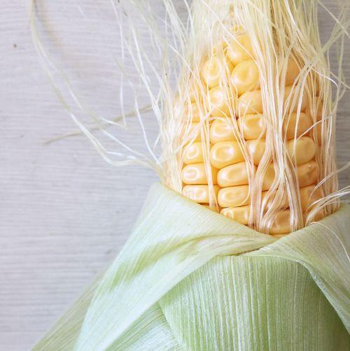 Mais Corn EyeEm