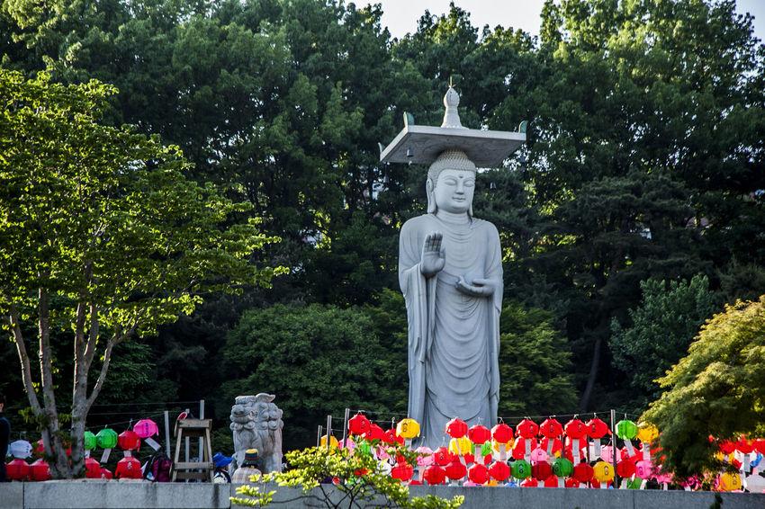Art Art And Craft Bongeunsa Buddha Statue Buddhist Temple Creativity Culture Cultures Famous Place Human Representation Lotus Lantern Outdoors Place Of Worship Religion Sculpture Spirituality Statue Travel Destinations Tree