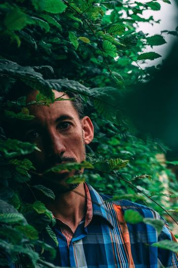 Portrait of a man looking through leaves