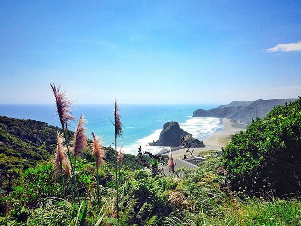 Lion Rock in the landscape. IPhoneography Iphoneonly Landscape Lion Rock Landscape_Collection Landscape_photography Nature Snapseed OpenEdit Ocean Sea Beach Sea And Sky Bush Sky Showcase: February Ladyphotographerofthemonth The Great Outdoors - 2016 EyeEm Awards