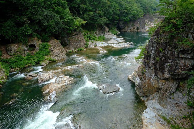High angle view of river flowing through rocks in forest