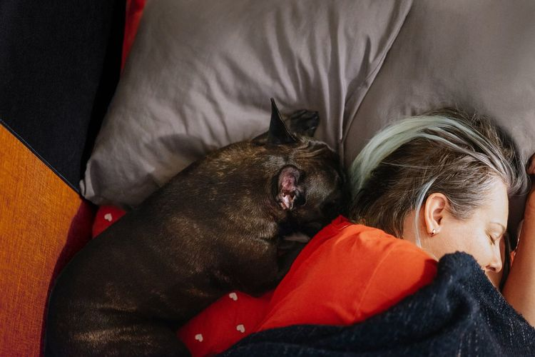 Midsection of a woman and dog sleeping