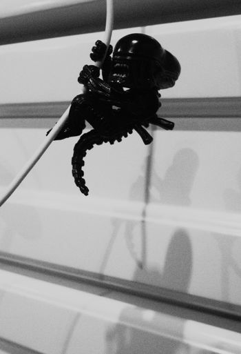 Alien Black And White Collection  Black And White Photography Cable Hobby And Toys Hobby Photography Screaming_shots Shadow Toy Figure Toy Photography Xenomorph Xenomorph Figure