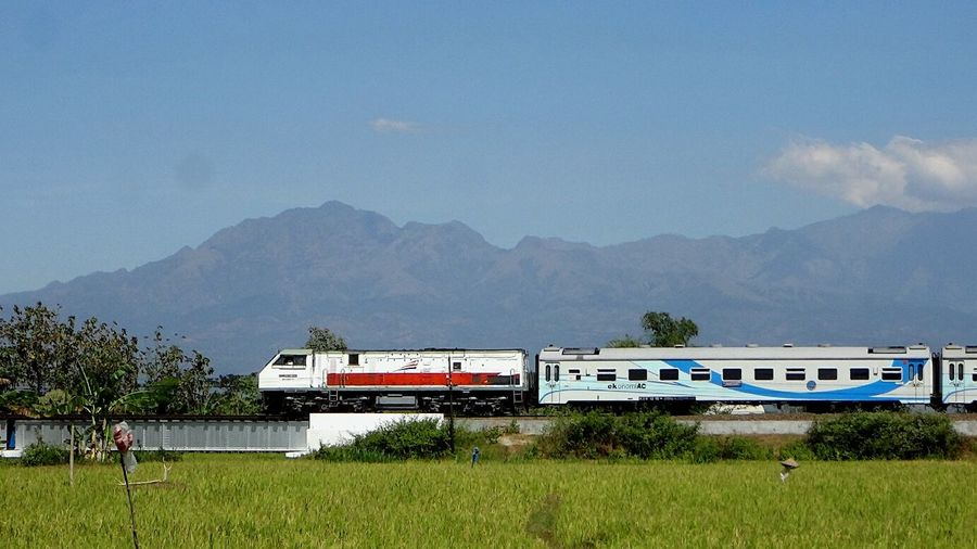 Across Ricefield and Mountain Train Rice Field Mountains Landscape Mountain View Trainphotography