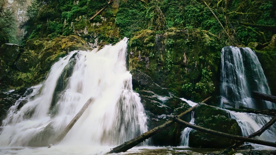Nature On Your Doorstep Waterfalls, Pack Forest Washington. KimberlyJTilley The Great Outdoors - 2015 EyeEm Awards