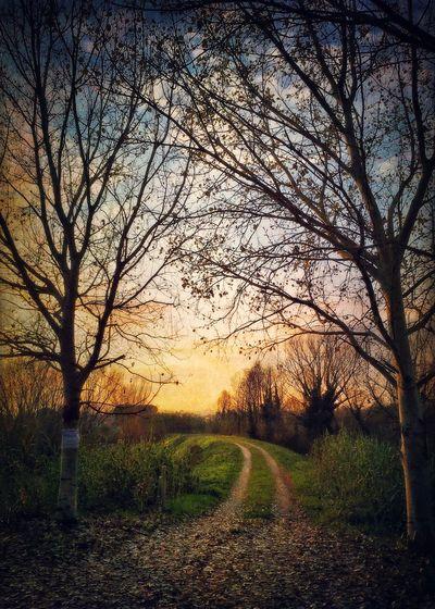 EyeEm Best Shots - Landscape IPhoneography EyeEm Iphoneonly AMPt_community