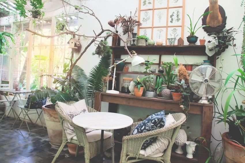 Vintage style cafe or restaurant, Interior design concept Cafe Time Chair Coffee Cottage Day English Countryside English Garden Female Furniture Home Showcase Interior Indoors  Interior Design Lifestyles No People Plant Potted Plant Restaurant Style Table Tree Vintage