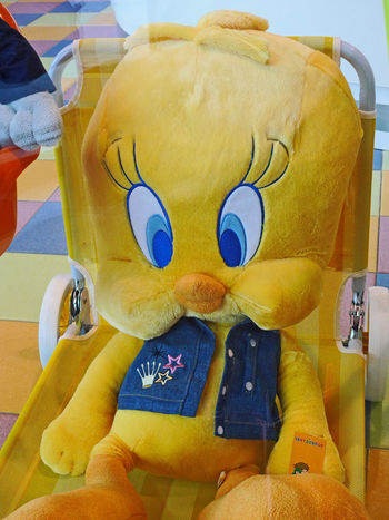 Tweetie Pie cuddly toy Blue Eyes Soft Toy Yellow Bird Cartoon Character Close-up Cuddly Toy Day Human Body Part Human Hand Indoors  Men One Person People Real People Tweetiepie