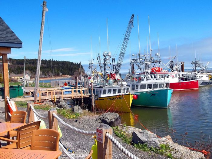 The Lobster Fishing Boat Fleet on the Bay of Fundy East Coast Beauty Fishing Village Lobster Boat Colorful Boats Day Fishing Boat Harbor Lobster Fishing Lobster Fishing Equipment Lobster Fishing Fleet Losbster Fishing Boats Mast Mode Of Transport Moored Nature Nautical Vessel No People Outdoors Sea Sky Transportation Water