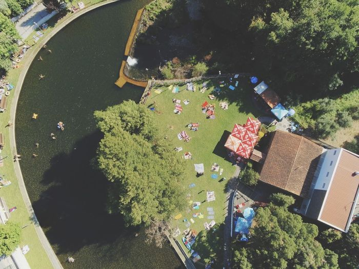 High angle view of people standing by tree