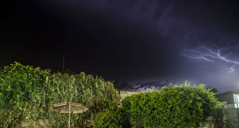 Backgrounds Backyard Backyardphotography Cordobaargentina Córdoba Huinca Illuminated Lightening Night Plants Storm Storm Cloud Storms Stormy Stormy Weather Umbrella