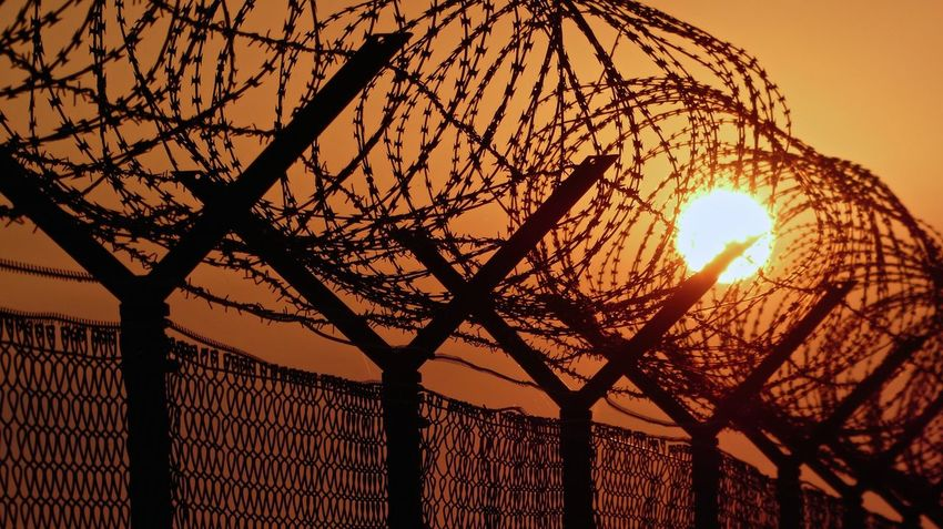 Barbed Wire Barbed Wire Fence Barbedwire Beauty In Nature Branch Cloud - Sky Fence Fences No People Orange Color Protection Safety Sonnenuntergang Stacheldraht Stacheldrahtzaun Sun Sunlight Sunset Tranquility