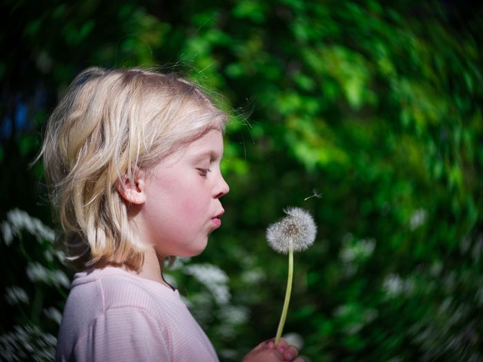 Close-up of girl blowing dandelion outdoors