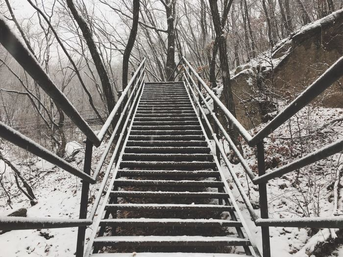 Tree Bare Tree Outdoors The Way Forward No People Day Nature Architecture Mountain Snow Hikingadventures 사패산 눈산행