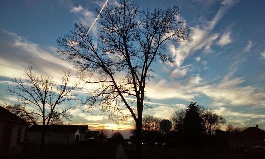 Cloudscape Sterlingcolorado Treescape Beautiful Sunset Silhouettes