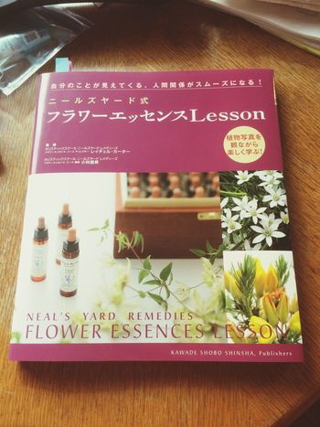 Communication Book ニールズヤード Neal's Yard