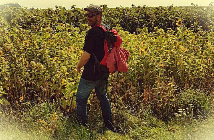 Schoin! Blühstreifen Landwirtschaft Bienen  Bienenweide Zwanzig17