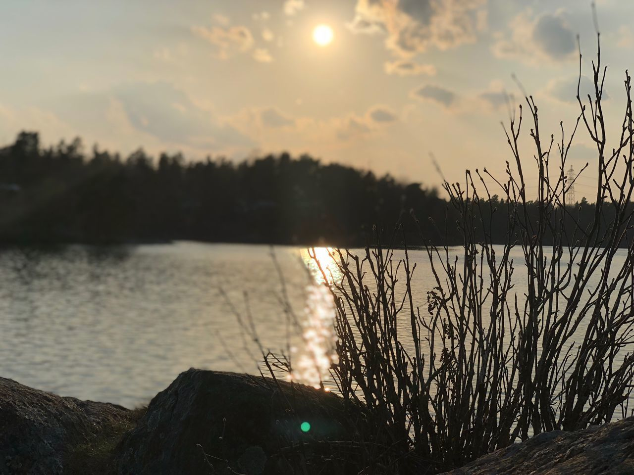 water, sunset, sky, tranquility, tranquil scene, beauty in nature, scenics - nature, plant, tree, lake, nature, sun, reflection, no people, idyllic, outdoors, cloud - sky, sunlight, non-urban scene